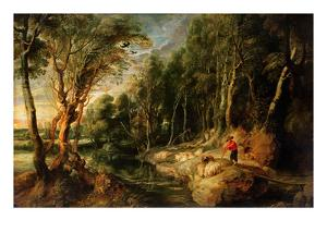 A Shepherd with His Flock in a Woody Landscape, C.1615-22 (Oil on Oak) by Peter Paul Rubens