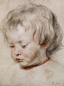Portrait Study of His Son Nicolas, 1621 by Peter Paul Rubens
