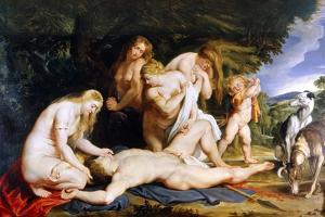 The Death of Adonis (With Venus, Cupid and the Three Graces) C.1614 by Peter Paul Rubens
