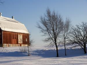Typical Red Barn in Rural Wisconsin in Winter by Peter Ptschelinzew