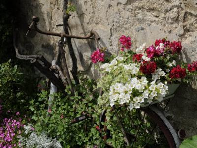 Bicycle Decorated with Flowers, Brantome, Dordogne, France, Europe