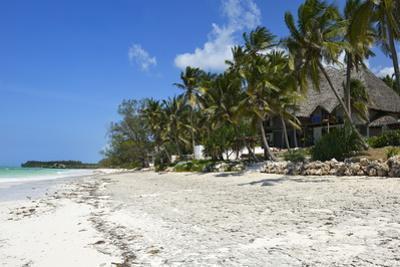 Bwejuu Beach, Zanzibar, Tanzania, East Africa, Africa