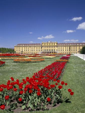 Palace and Gardens, Schonbrunn, Unesco World Heritage Site, Vienna, Austria by Peter Scholey