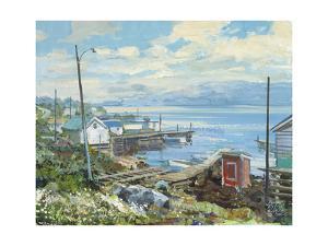 Baie Verte Newfoundland by Peter Snyder