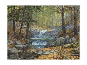 Glen Creek Waterfalls by Peter Snyder