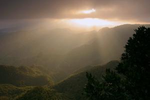 Anaga Mountains, Tenerife, 2007 by Peter Thompson