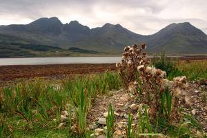 Bla Bheinn across Loch Slapin, Skye, Highland, Scotland by Peter Thompson