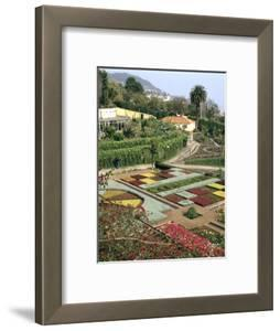 Botanical Gardens, Funchal, Madeira, Portugal by Peter Thompson