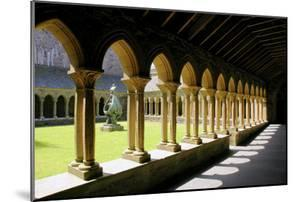 Cloisters of Iona Abbey, Argyll and Bute, Scotland by Peter Thompson