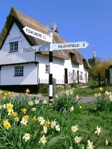 Daffodils, Road Sign and Cottage, Thriplow, Cambridgeshire by Peter Thompson