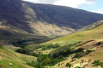 Glen Roy, Highland, Scotland by Peter Thompson
