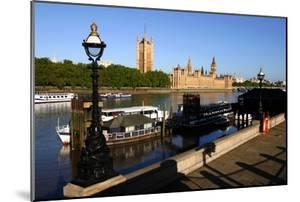 Houses of Parliament, London by Peter Thompson