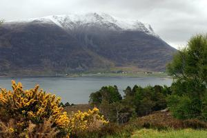 Loch Torridon and Liathach, Highland, Scotland by Peter Thompson