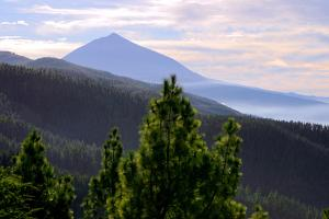 Mount Teide, Volcano on Tenerife, Canary Islands, 2007 by Peter Thompson