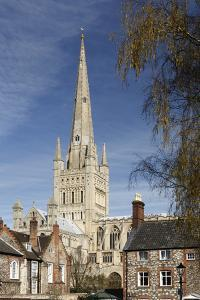 Norwich Cathedral, Norfolk, 2010 by Peter Thompson