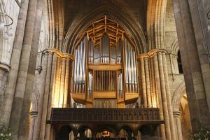 Organ, Hexham Abbey, Northumberland, 2010 by Peter Thompson