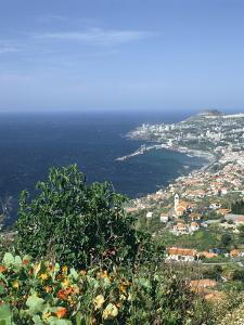 Panorama, Funchal, Madeira, Portugal by Peter Thompson