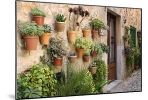 Potted Plants on the Wall of a House, Valldemossa, Mallorca, Spain by Peter Thompson