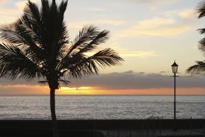 Sunset over the Sea, Tazacorte, La Palma, Canary Islands, Spain, 2009 by Peter Thompson