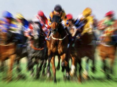 Horse Race in Motion