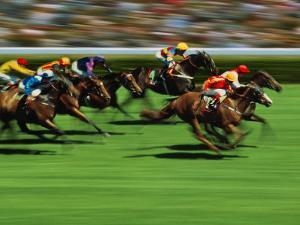 Horse Racing, Australia by Peter Walton