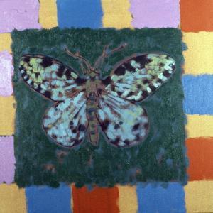 Leopard Moth, 1996 by Peter Wilson
