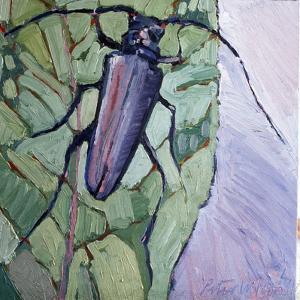 Musk Beetle, 1991 by Peter Wilson