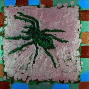 Spider, 1996 by Peter Wilson