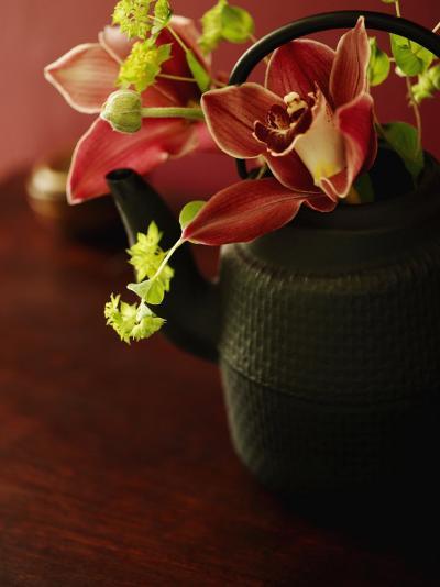 Petite Blossoms II--Photo