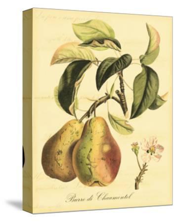 Petite Tuscan Fruits IV