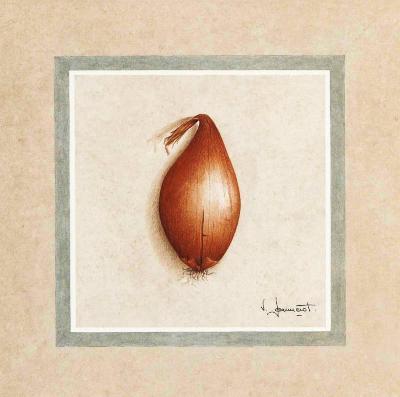 Petits Legumes II-Vincent Jeannerot-Art Print