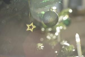 A Golden Star on the Christmas Tree by Petra Daisenberger
