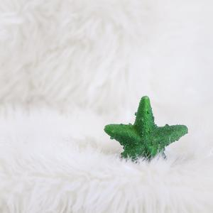 A Green Christmassy Star on Fleecy Ground by Petra Daisenberger
