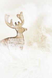 A Reindeer in a Stylised Winter Landscape. a Christmas Decoration by Petra Daisenberger