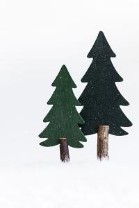 Christmas Decoration, Still Life Made of Wood, Fir Trees in Winter by Petra Daisenberger
