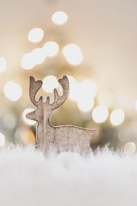 Reindeer - a Christmas Decoration by Petra Daisenberger