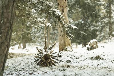 Winter Landscape in Bavaria - Snow