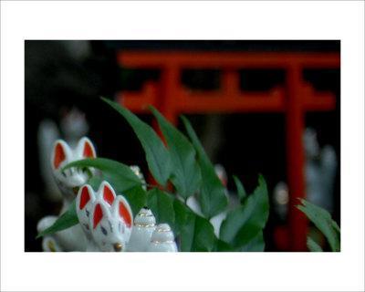 Shrine Foxes, Japan