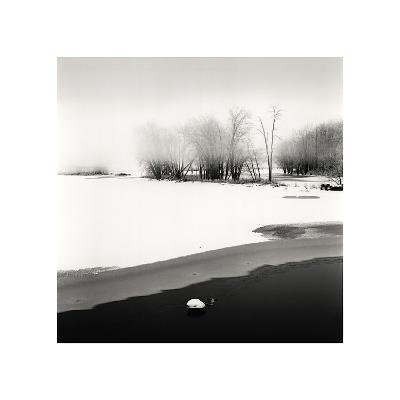 Petrie Island, Study, no. 1-Andrew Ren-Giclee Print