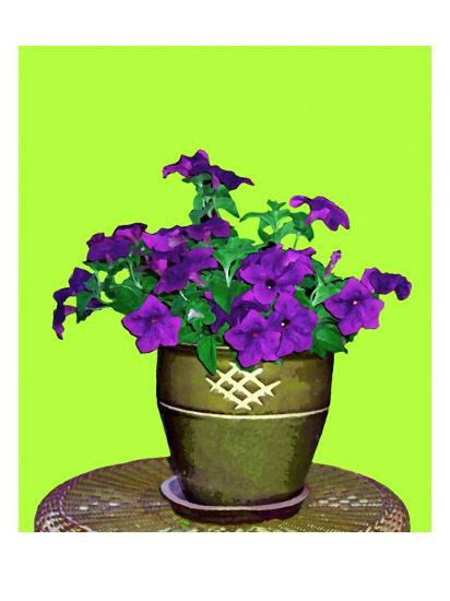 Petunia in Pot-Rich LaPenna-Giclee Print