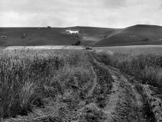 Pewsey White Horse-Fred Musto-Photographic Print
