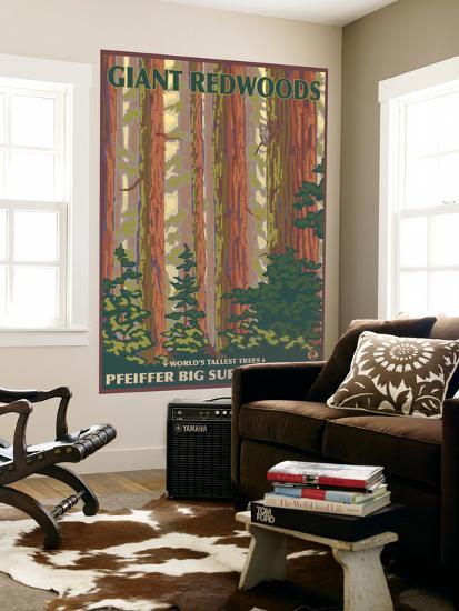 Pfeiffer Big Sur State Park, California - Giant Redwoods-Lantern Press-Wall Mural