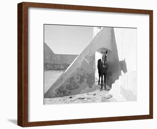 Pferd-Traum 7, 2015-Jaschi Klein-Framed Photographic Print