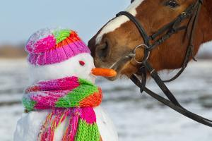 Portrait of Horse and Snowman in Winter Landscape. by PH.OK