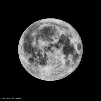 Phases of the Moon III--Art Print