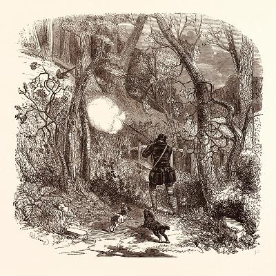 Pheasant Shooting in October--Giclee Print