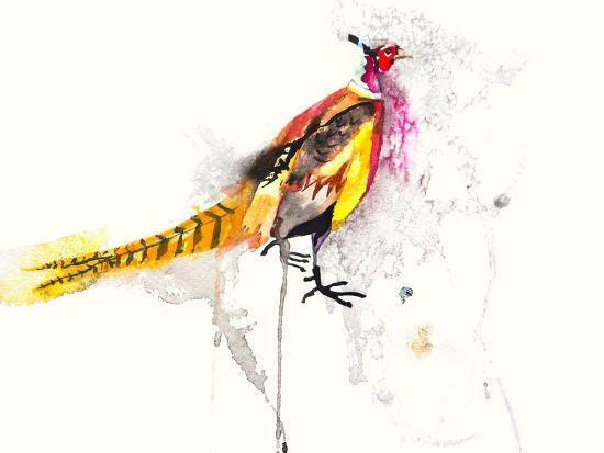 Pheasant-Karin Johannesson-Art Print