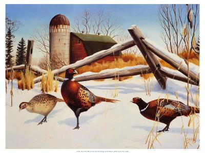 Pheasants II-Leo Stans-Art Print