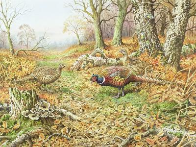 Pheasants with Blue Tits-Carl Donner-Giclee Print