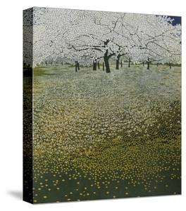 Blossom by Phil Greenwood